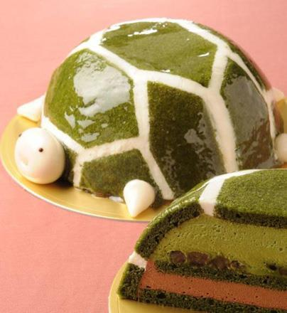 120913_tortoise